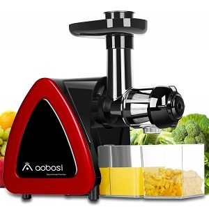 Aobosi Cold Press Juicer