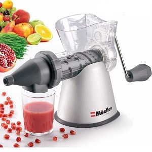 Mueller Elite Masticating Slow Fruit,Vegetable,Wheatgrass Juicer