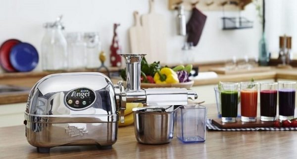 best twin gear juicer for home use